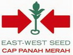 Lowongan PT East West Seed Indonesia
