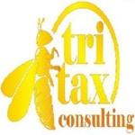 Lowongan TRiTax Consulting