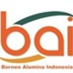 Lowongan PT Borneo Alumina Indonesia