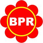 Lowongan PT. BPR SATRIA PERTIWI SEMARANG