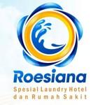 Lowongan Roesiana Laundry