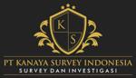Lowongan PT Kanaya Survey Indonesia