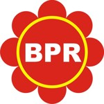 Lowongan PT. BPR INTAN SURYA