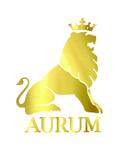Lowongan Aurum Consulting