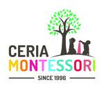 Lowongan Ceria Montessori School