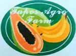 Lowongan Tapos Agro Farm