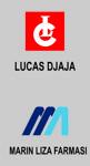 Lowongan Lucas Group