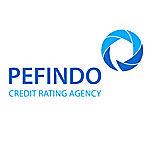Lowongan PT Pemeringkat Efek Indonesia (PEFINDO)