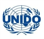 Lowongan United Nations Industrial Development Organization