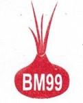 Lowongan CV.BAWANG MAS 99