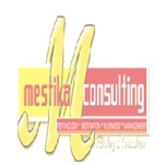 Lowongan Mestika Consulting