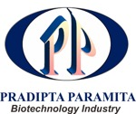 Lowongan Pradipta Paramita