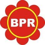 Lowongan PT BPR Hosing Jaya
