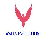 Lowongan WALIA EVOLUTION