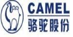 Camel Power Trading Sdn Bhd