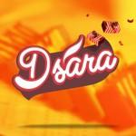 DSARA LAYER CAKES
