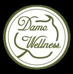 Damo Wellness Sdn Bhd