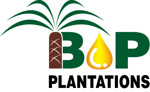 Lowongan BEWANI OIL PALM PLANTATIONS LIMITED