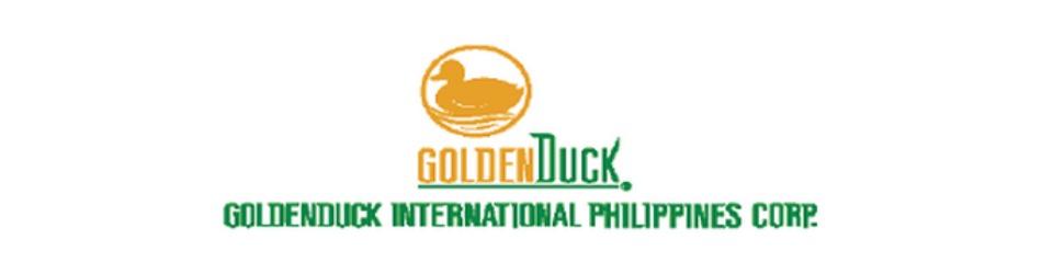 Senior Field Engineer Job GoldenDuck International Phils Corp – Field Engineer Job Description