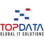TopData Global IT Solutions, Inc. job vacancy