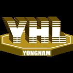 Lowongan Yongnam Engineering & Construction Pte Ltd